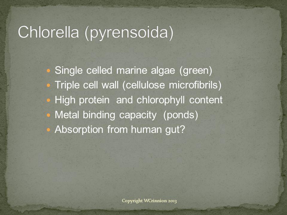 Chlorella (pyrensoida)