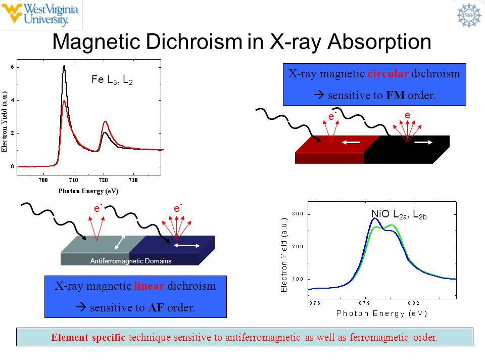 Magnetic Dichroism in X-ray Absorption