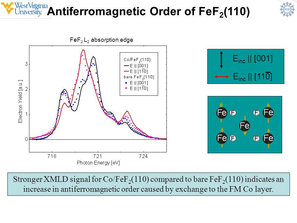 Antiferromagnetic Order of FeF2(110)