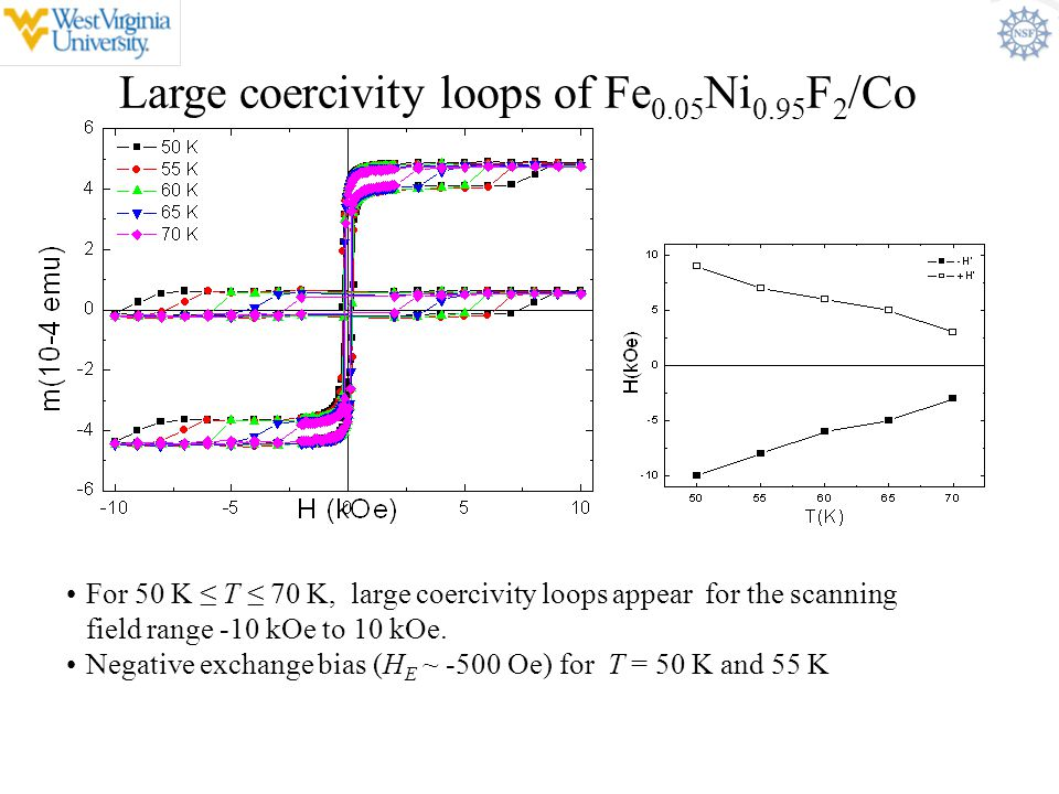 Large coercivity loops of Fe0.05Ni0.95F2/Co