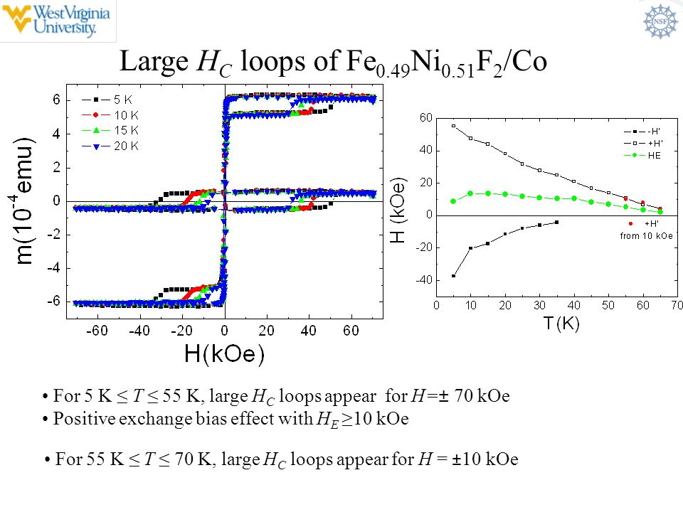 Large HC loops of Fe0.49Ni0.51F2/Co