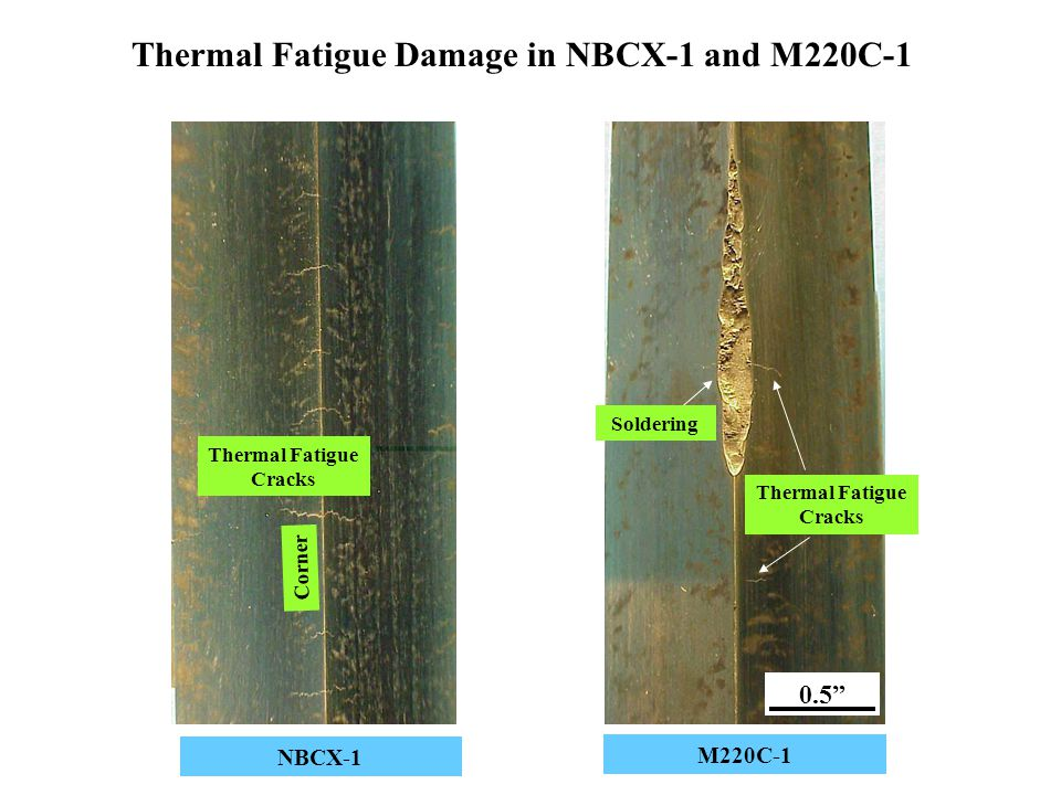 Thermal Fatigue Damage in NBCX-1 and M220C-1