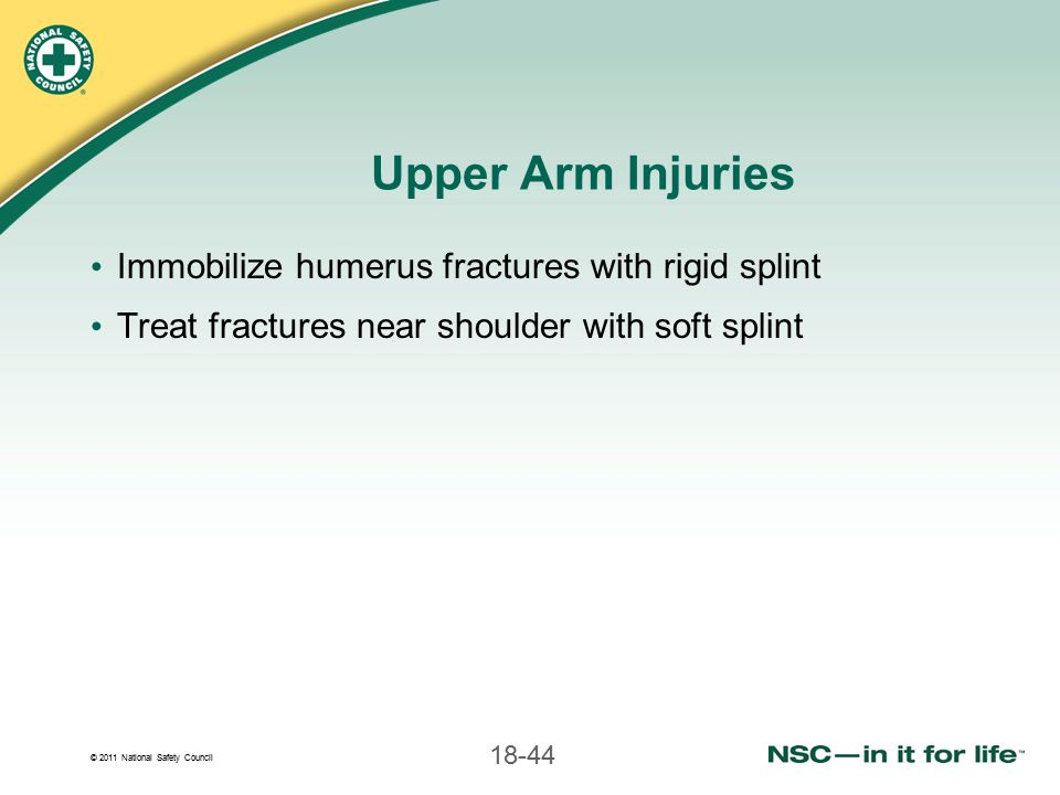 Upper Arm Injuries Immobilize humerus fractures with rigid splint