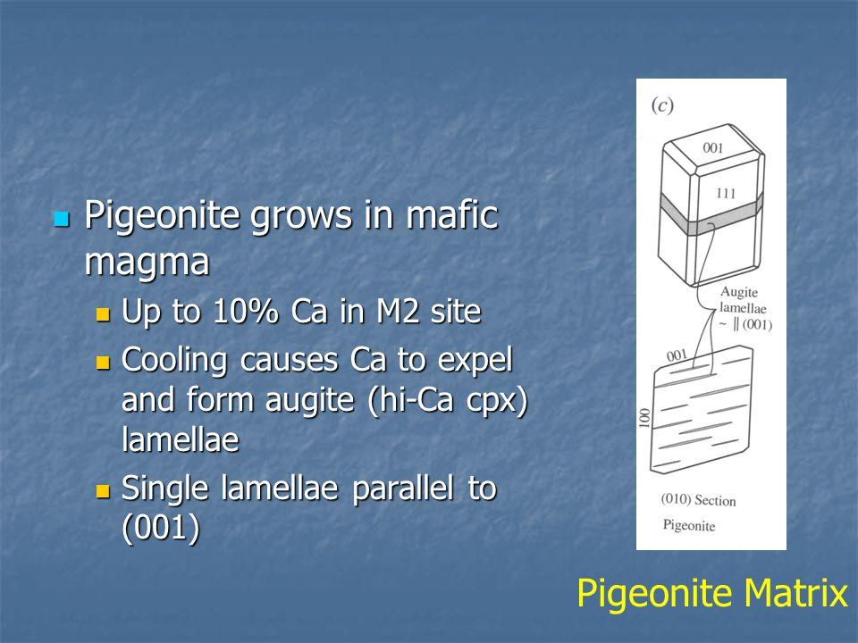 Pigeonite grows in mafic magma
