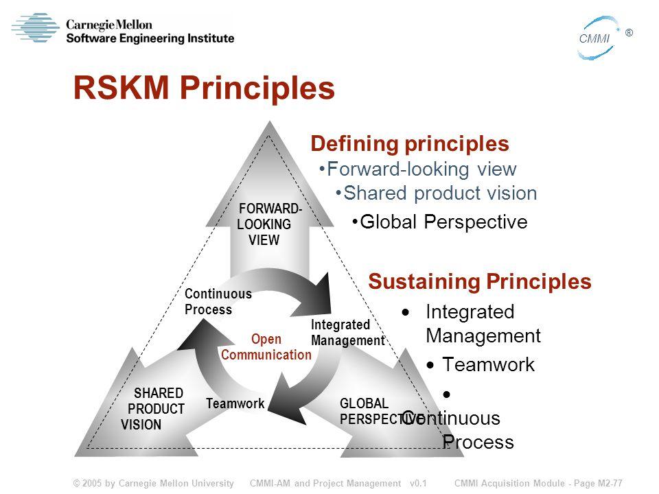 RSKM Principles Defining principles Sustaining Principles
