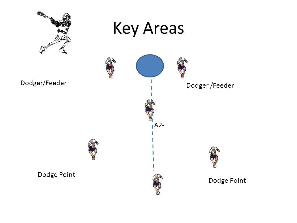 Key Areas Dodger/Feeder Dodger /Feeder A2- Dodge Point Dodge Point