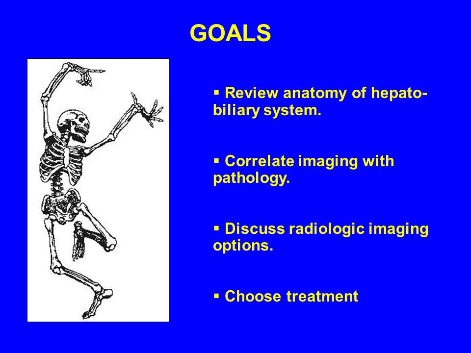 GOALS Review anatomy of hepato- biliary system.