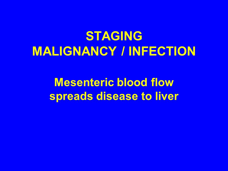 STAGING MALIGNANCY / INFECTION Mesenteric blood flow spreads disease to liver