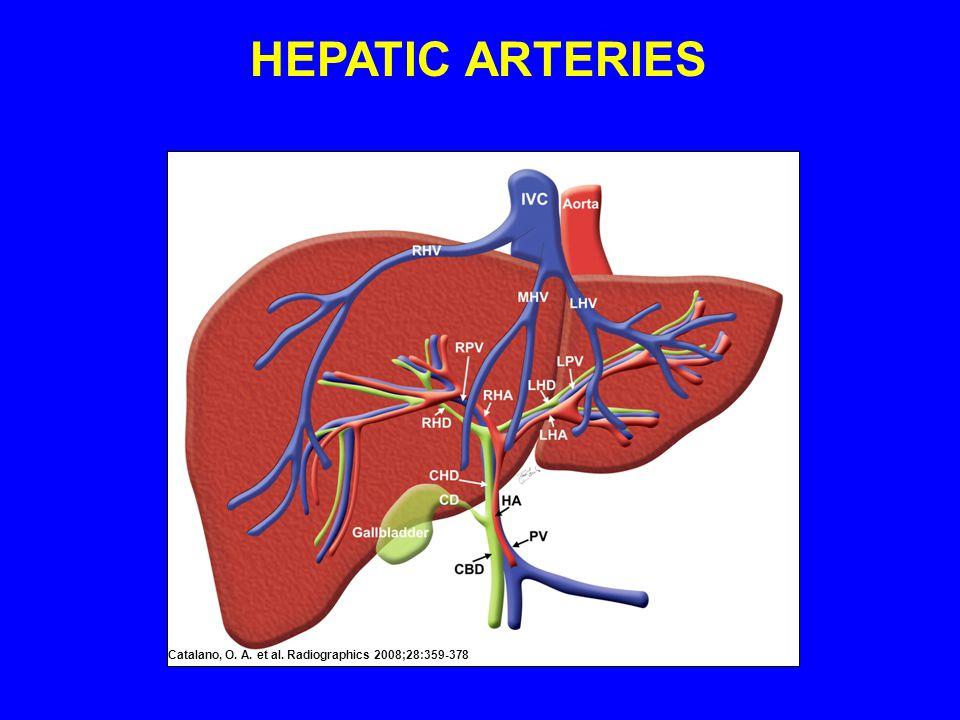 HEPATIC ARTERIES Catalano, O. A. et al. Radiographics 2008;28:359-378