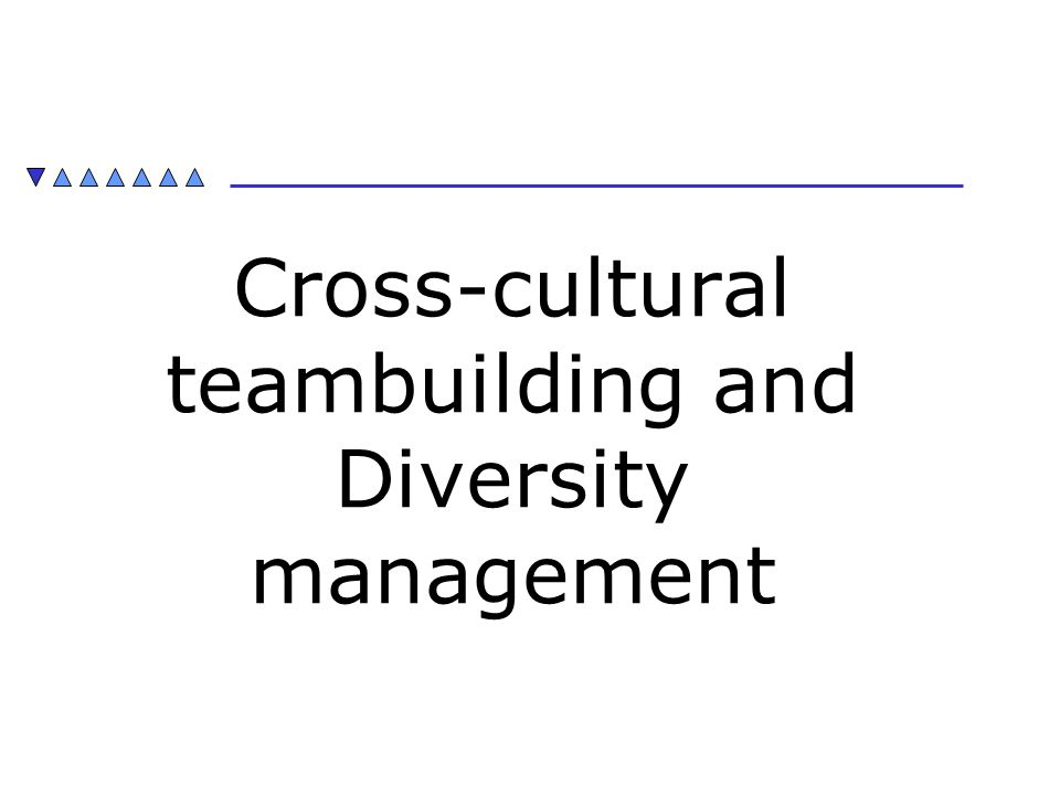 Cross-cultural teambuilding and Diversity management