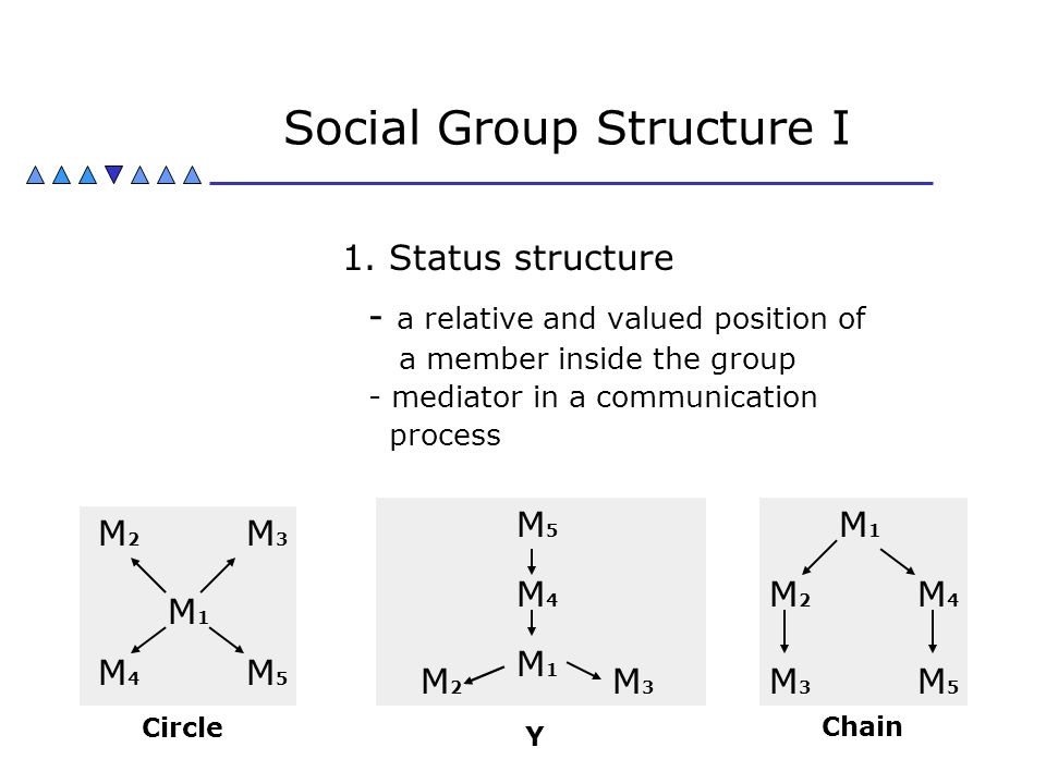 Social Group Structure I