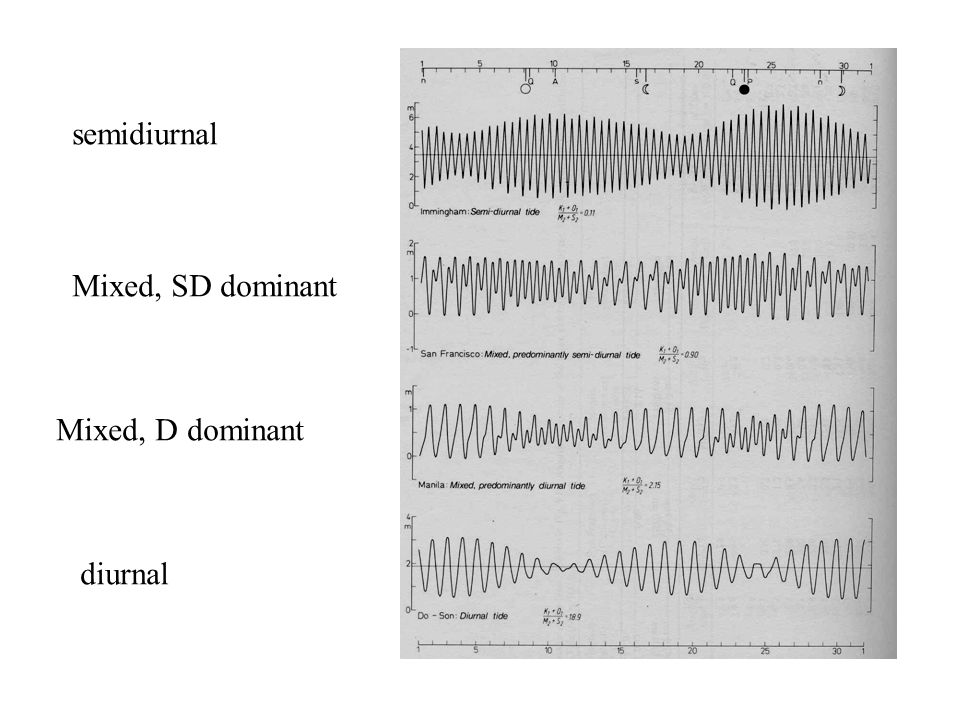 semidiurnal Mixed, SD dominant Mixed, D dominant diurnal