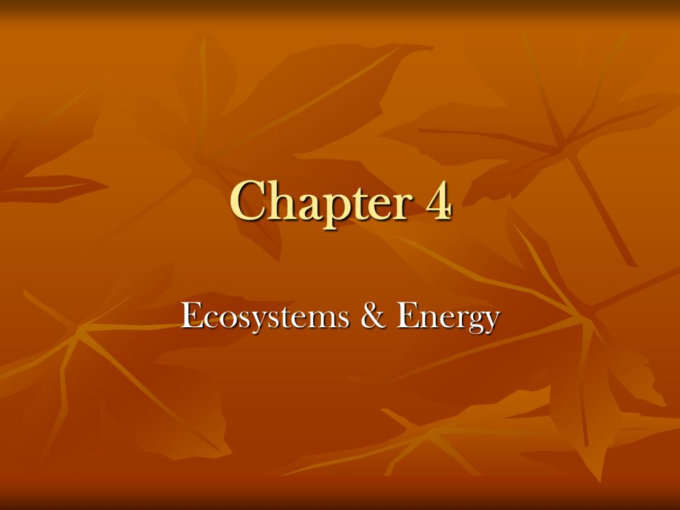 Chapter 4 Ecosystems & Energy