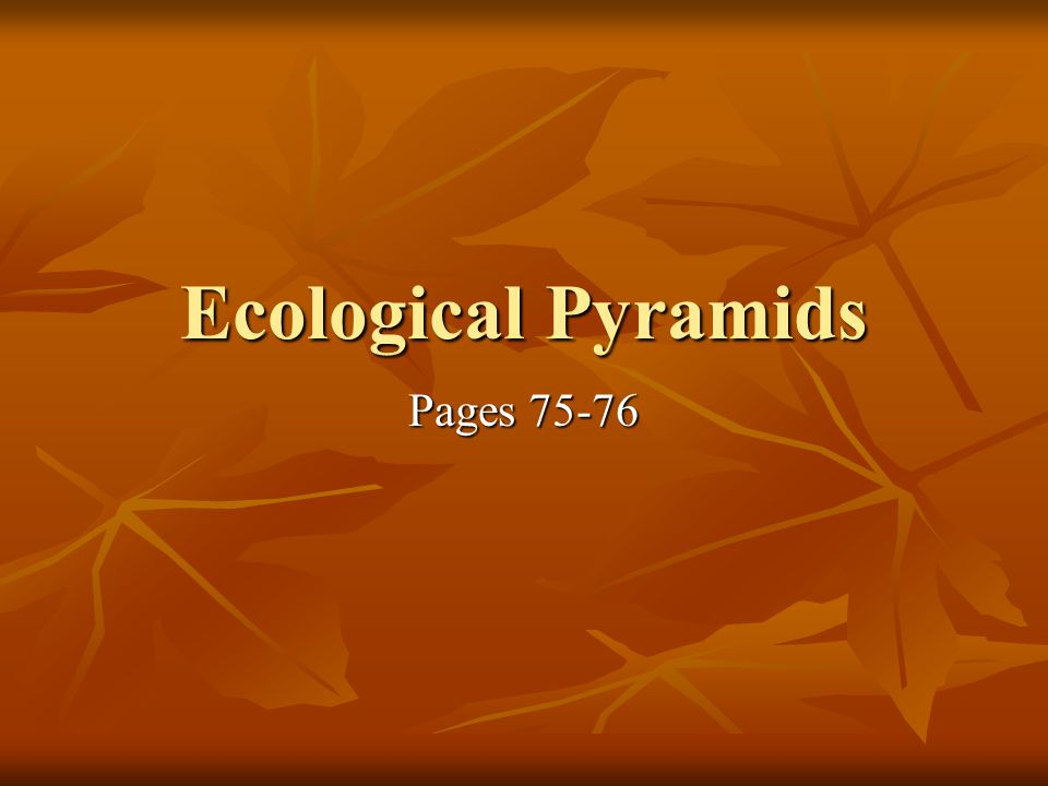 Ecological Pyramids Pages 75-76