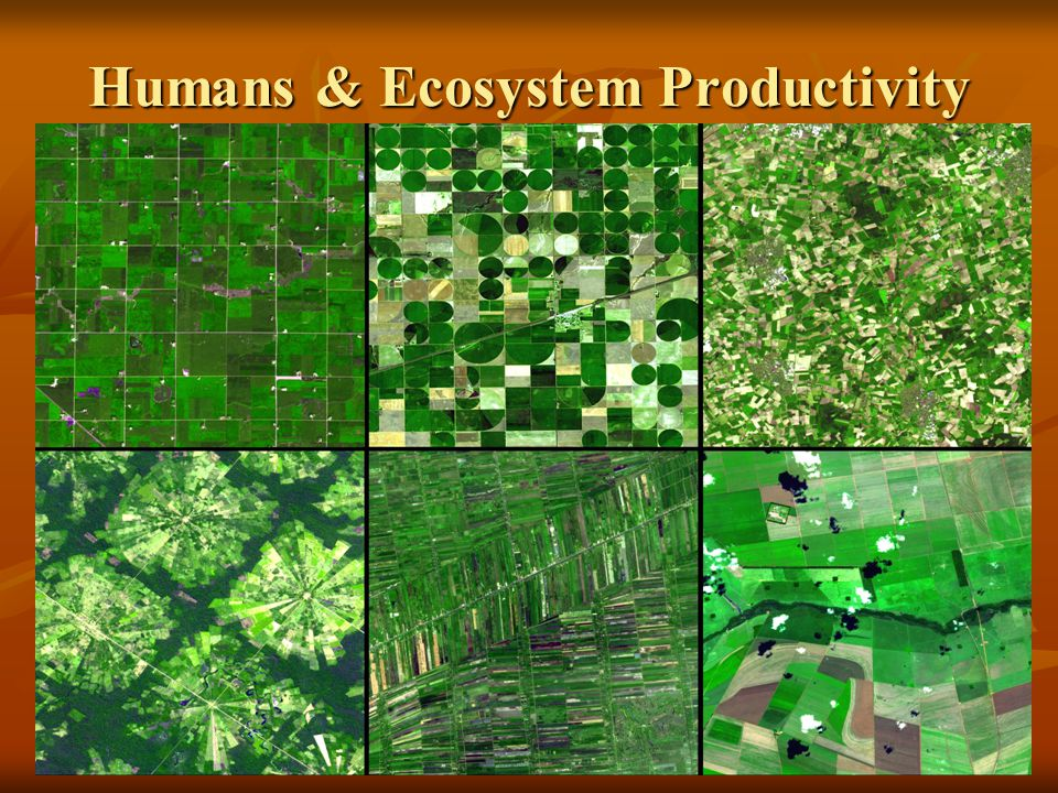 Humans & Ecosystem Productivity