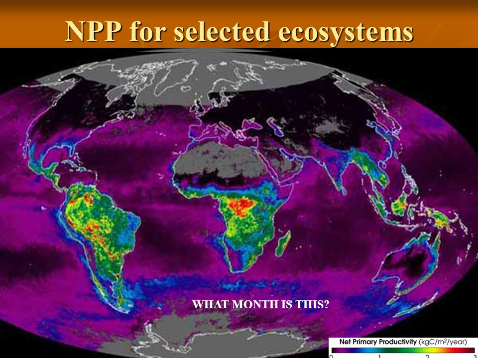 NPP for selected ecosystems