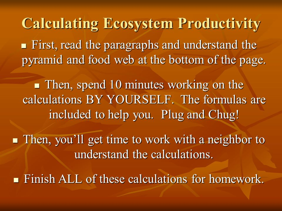 Calculating Ecosystem Productivity