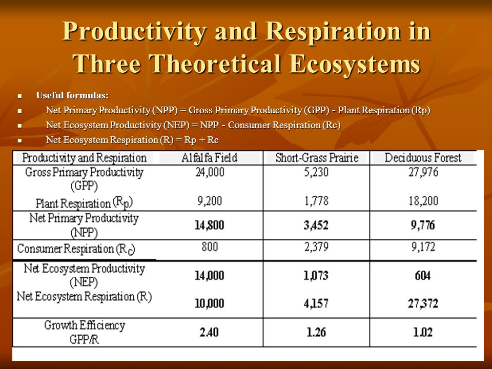 Productivity and Respiration in Three Theoretical Ecosystems