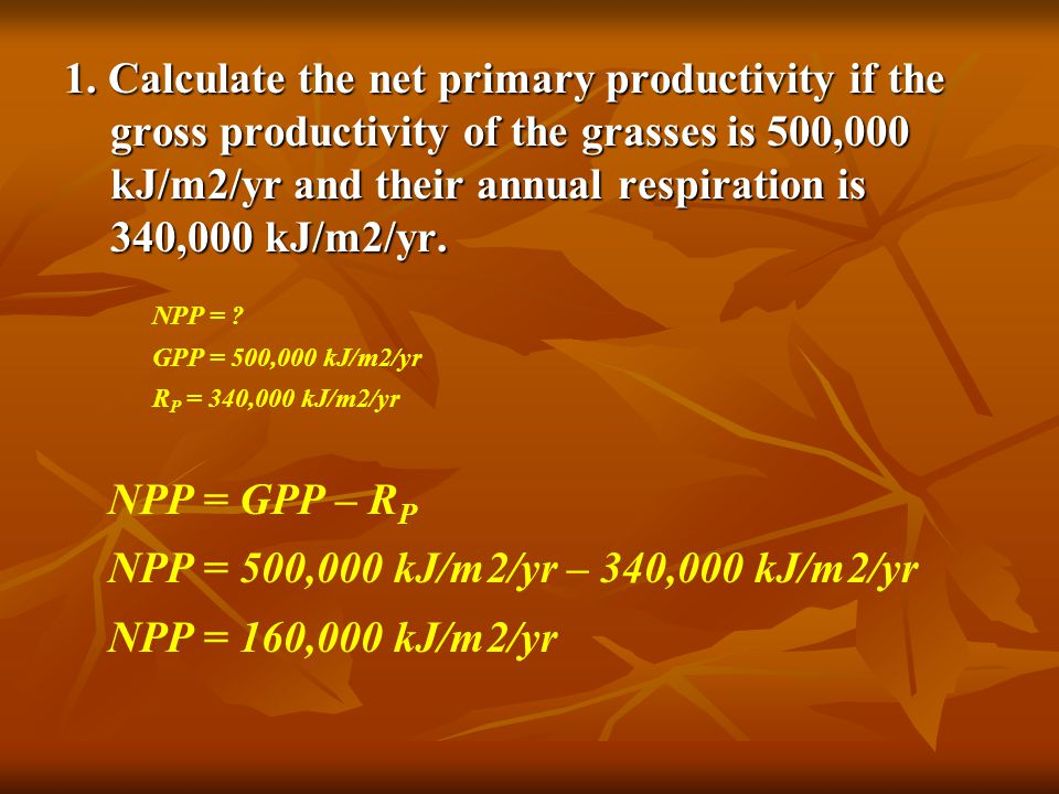 1. Calculate the net primary productivity if the gross productivity of the grasses is 500,000 kJ/m2/yr and their annual respiration is 340,000 kJ/m2/yr.