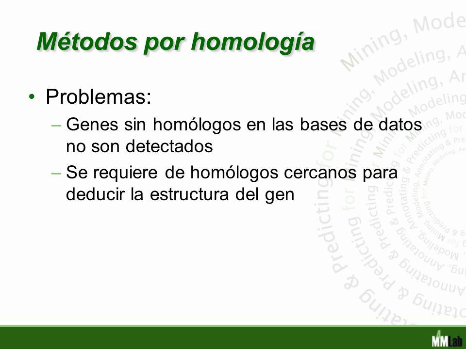 Métodos por homología Problemas: