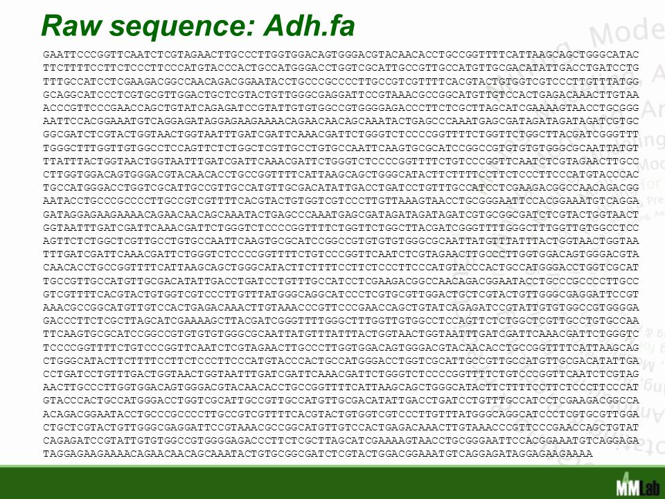 Raw sequence: Adh.fa