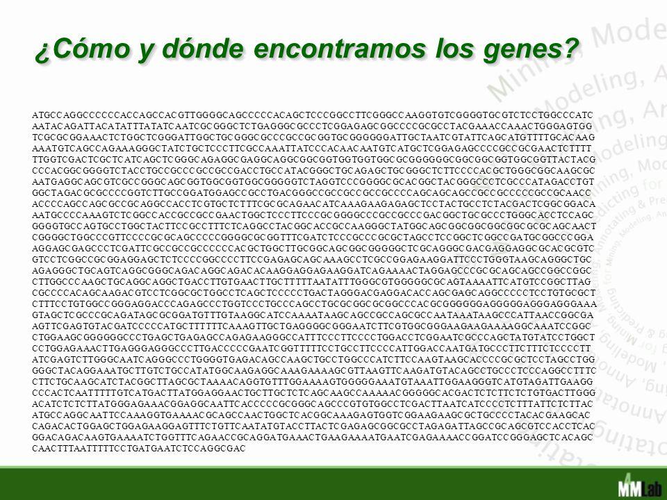 ¿Cómo y dónde encontramos los genes