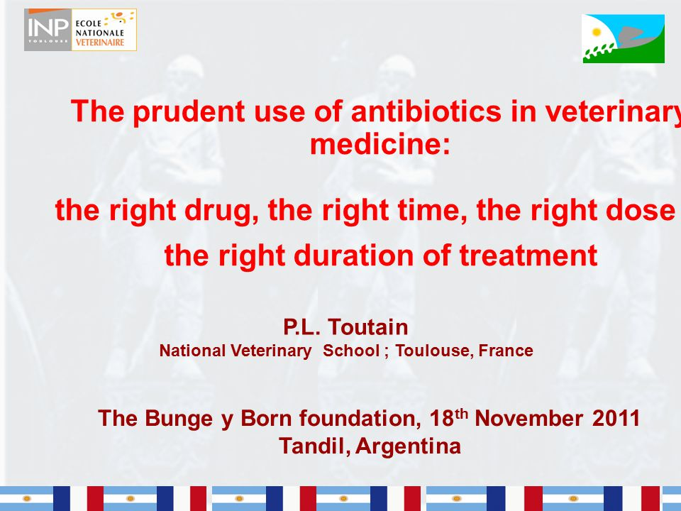 The prudent use of antibiotics in veterinary medicine: the right drug, the right time, the right dose & the right duration of treatment