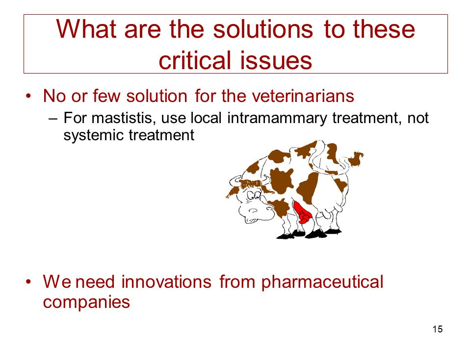 What are the solutions to these critical issues