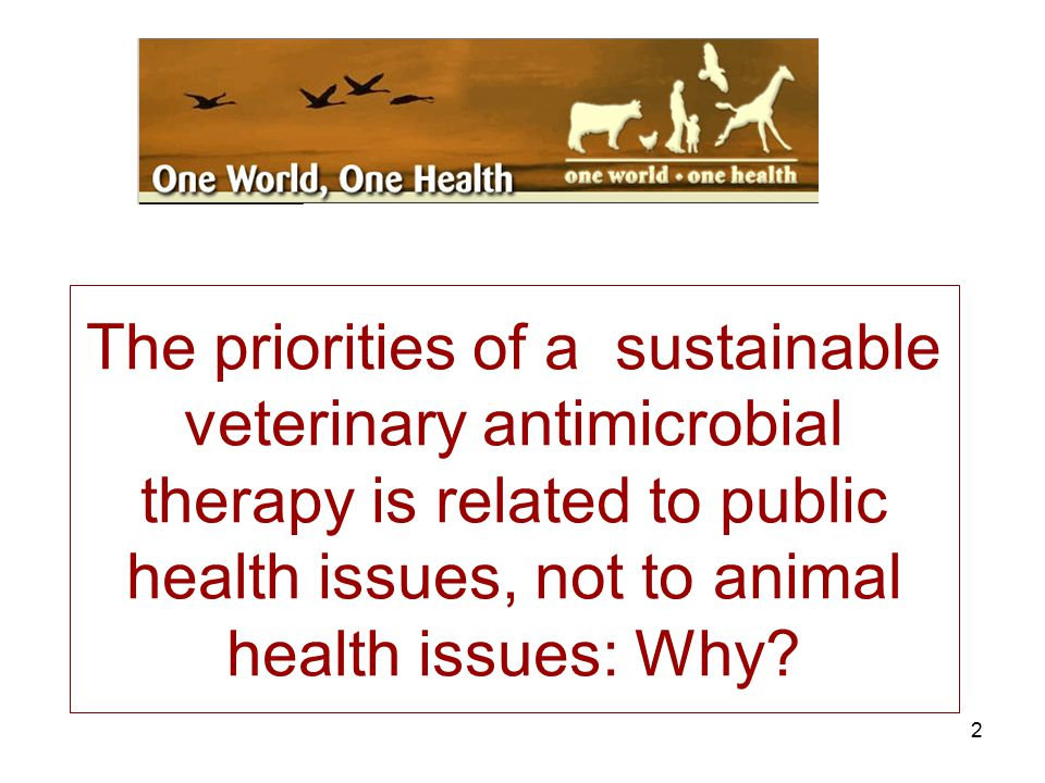 The priorities of a sustainable veterinary antimicrobial therapy is related to public health issues, not to animal health issues: Why