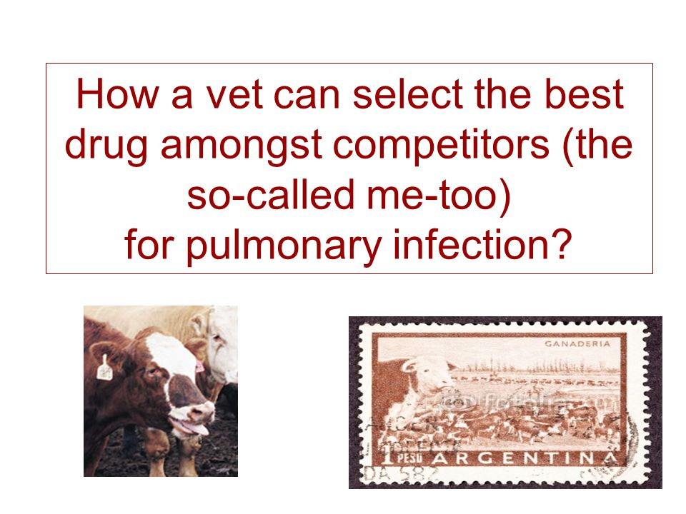 How a vet can select the best drug amongst competitors (the so-called me-too) for pulmonary infection