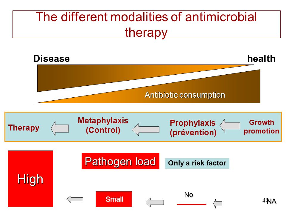 The different modalities of antimicrobial therapy