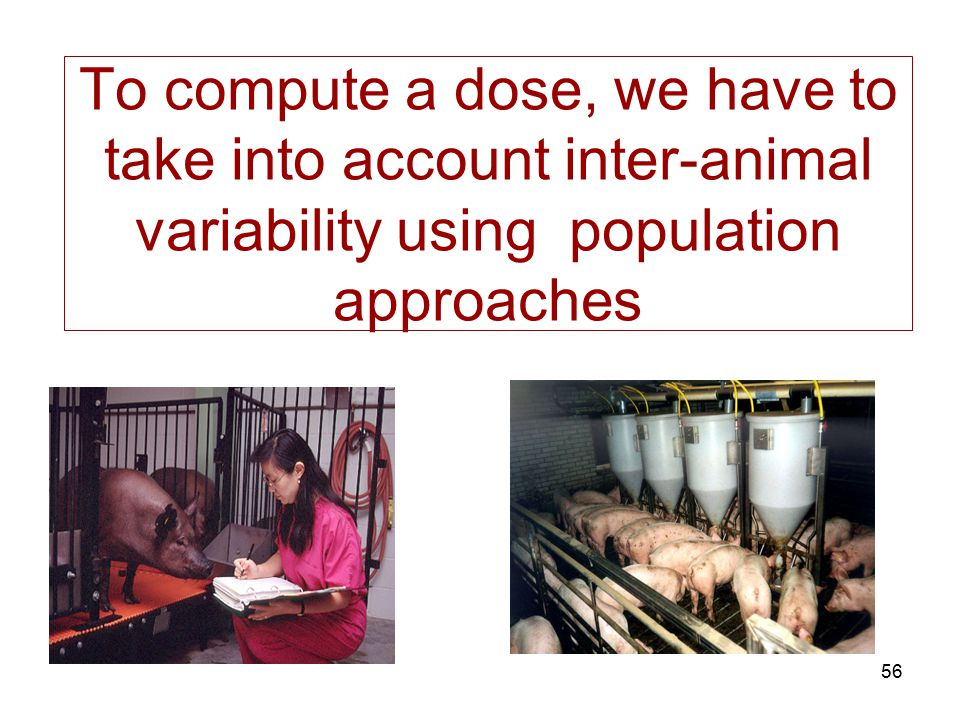 To compute a dose, we have to take into account inter-animal variability using population approaches