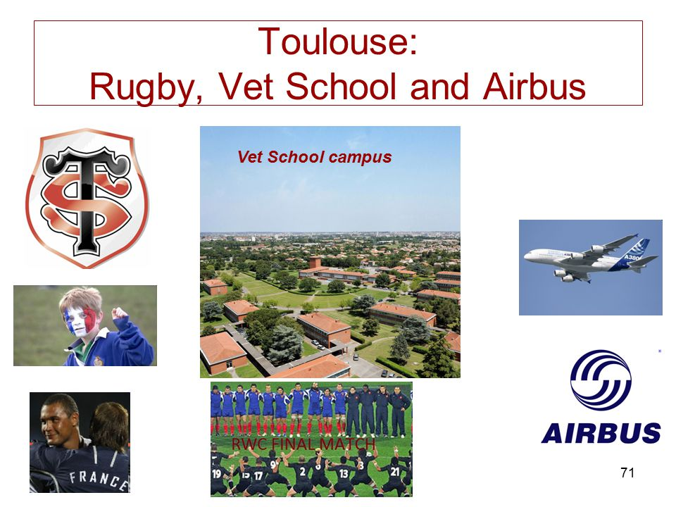 Toulouse: Rugby, Vet School and Airbus