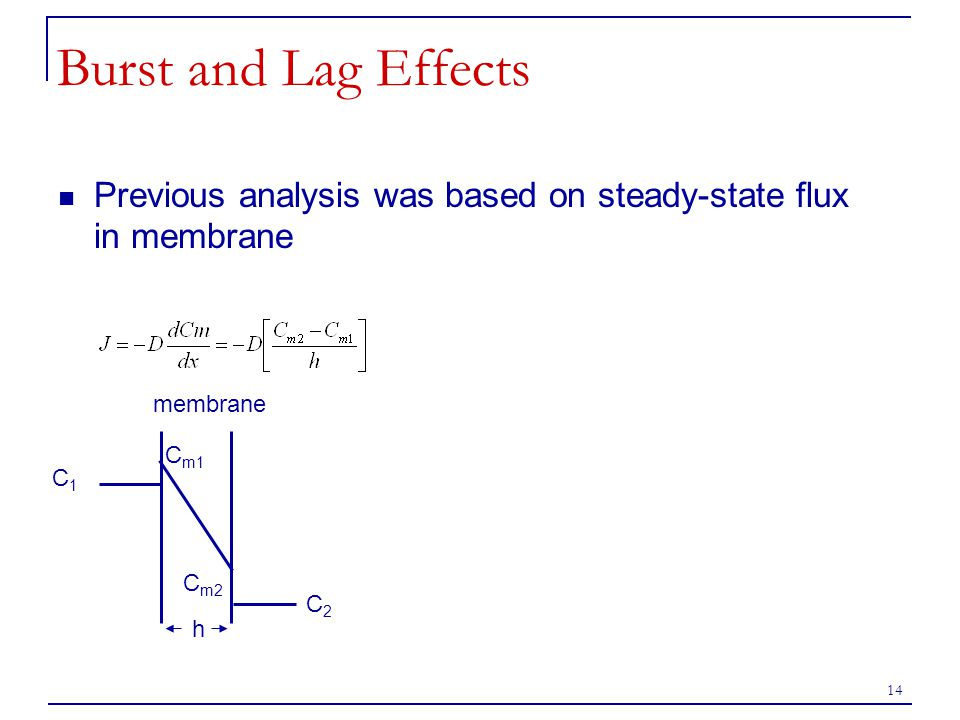 Burst and Lag Effects Previous analysis was based on steady-state flux in membrane. membrane. Cm1.