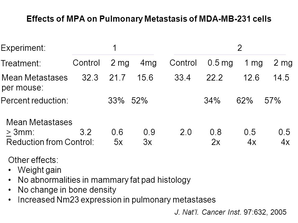 Effects of MPA on Pulmonary Metastasis of MDA-MB-231 cells