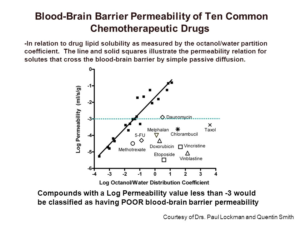 Blood-Brain Barrier Permeability of Ten Common Chemotherapeutic Drugs