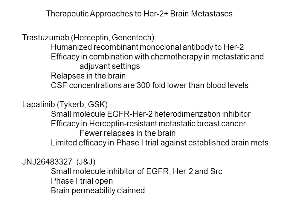 Therapeutic Approaches to Her-2+ Brain Metastases