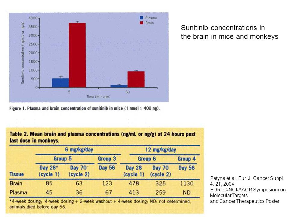 Sunitinib concentrations in the brain in mice and monkeys