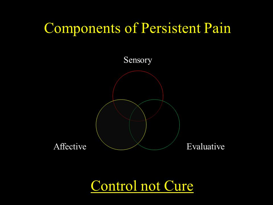 Components of Persistent Pain