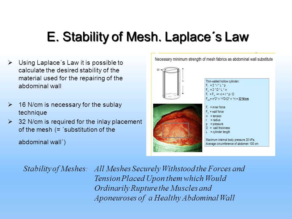 E. Stability of Mesh. Laplace´s Law