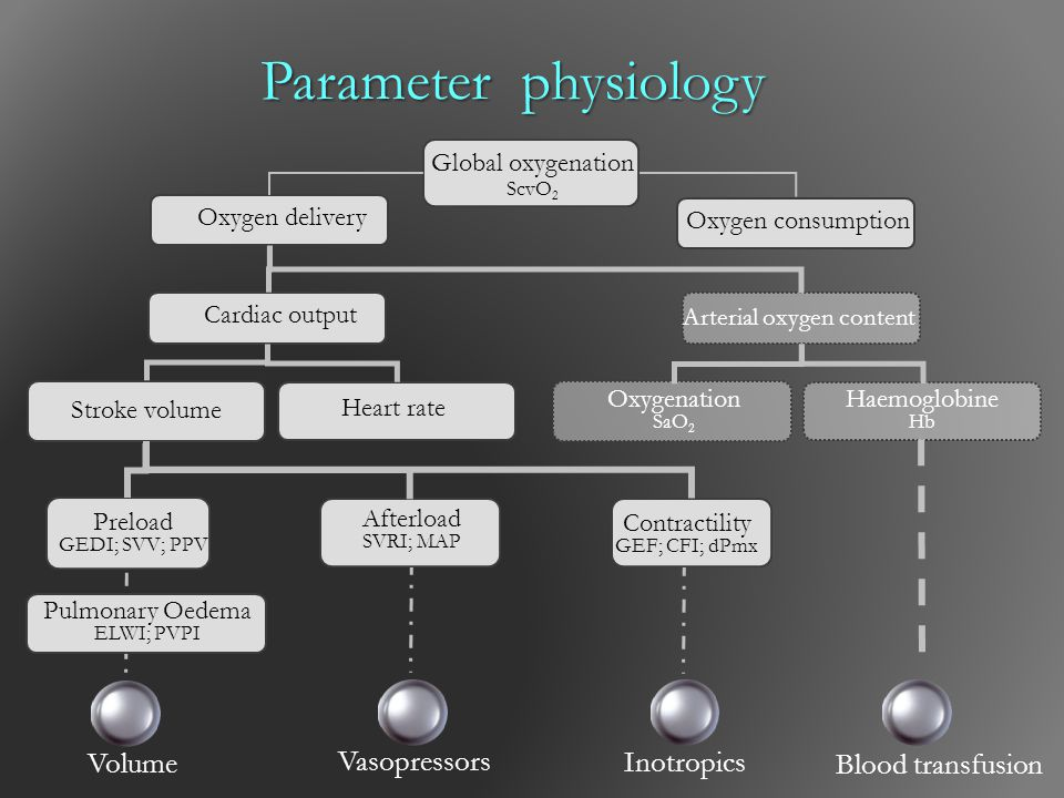 Parameter physiology Volume Vasopressors Inotropics Blood transfusion
