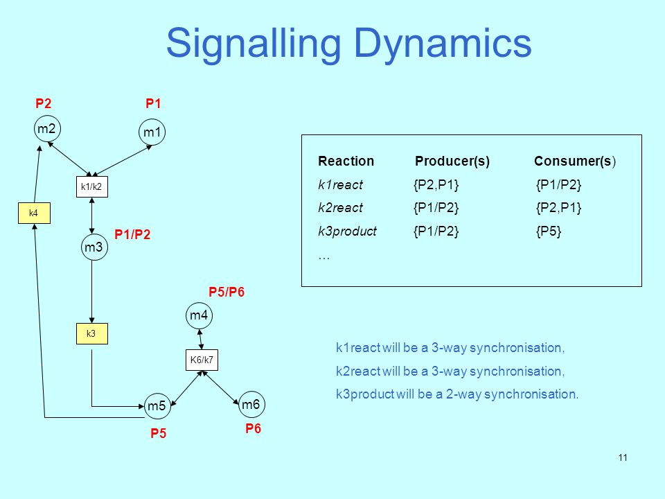 Signalling Dynamics P2 P1 m2 m1 Reaction Producer(s) Consumer(s)