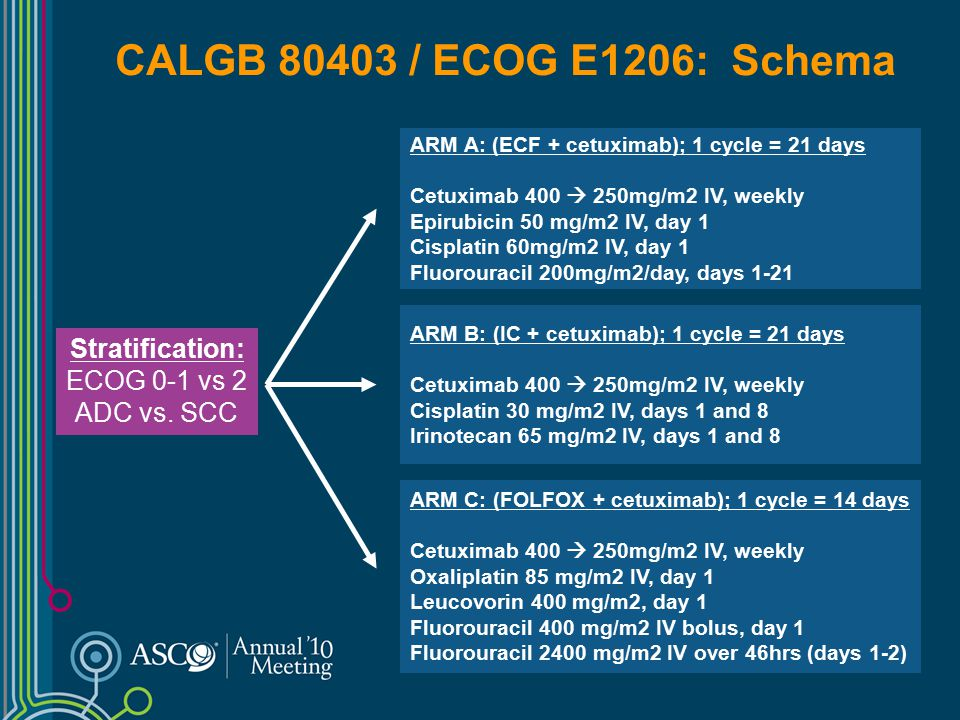 CALGB 80403 / ECOG E1206: Schema Stratification: ECOG 0-1 vs 2