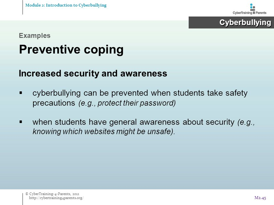 Preventive coping Increased security and awareness