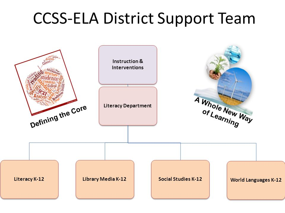 CCSS-ELA District Support Team