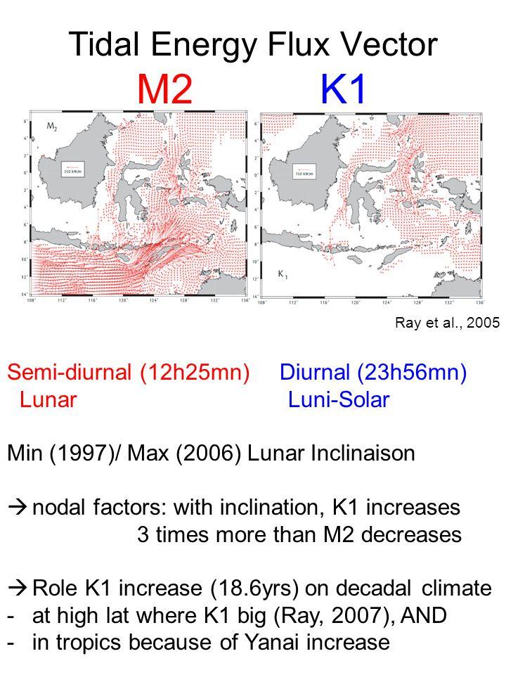 Tidal Energy Flux Vector M2 K1