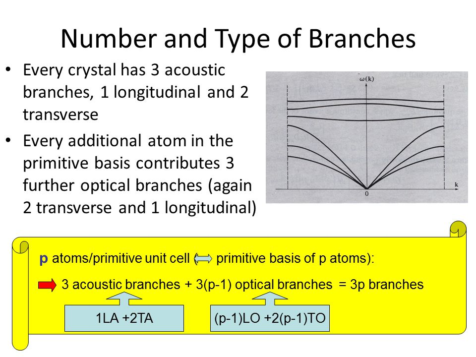 Number and Type of Branches