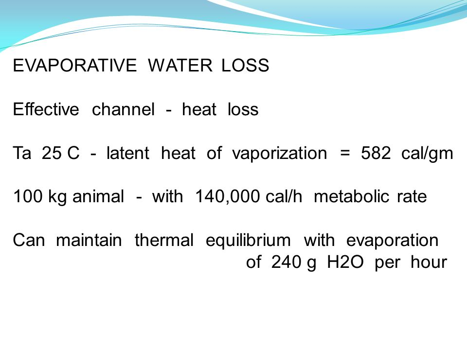 EVAPORATIVE WATER LOSS