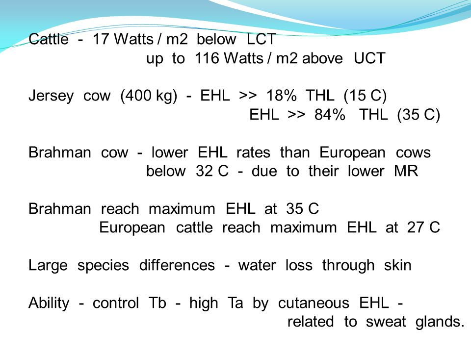 Cattle - 17 Watts / m2 below LCT