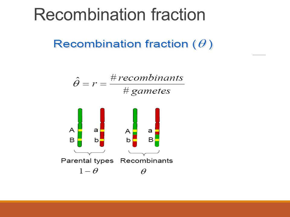 Recombination fraction